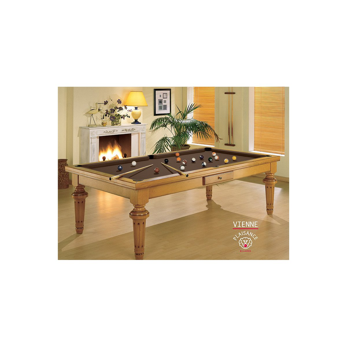 Table Billard Convertible Vienne